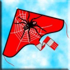 WINDSPEED SPIDER DELTA SINGLE STRING KITE