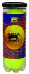 BUFFALO TOURNAMENT 3 PACK OF TENNIS BALLS
