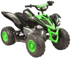YAMAHA RAPTOR 12 VOLT ATV RIDE ON - GREEN